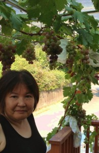 my host grows grapes in her backyard in Japan